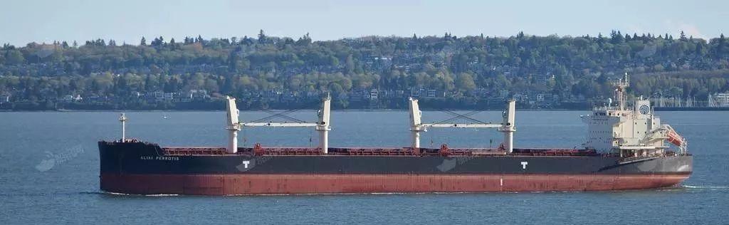 震惊,又一家干散货船舶运营商突然停止运营了!